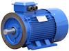Elektromotor DAM 400V, 50Hz, 30kW, 2-polig, 3000U/min, IP55