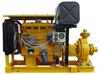 IS100-65-315 aufgebaut mit Dieselmotor