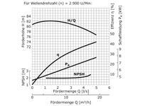 WPEI-CESM50-32-250 - Pumpenkennlinie