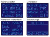 Elektronische Motorsteuereinheit RTG3s Anzeigebeispiele